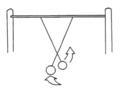 Harmonic Pendulums
